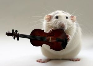 MouseTinyViolin